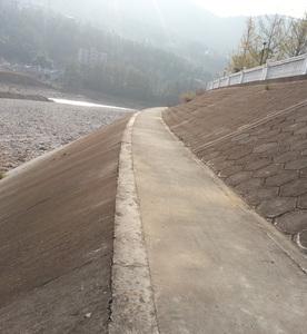 堤防工程建设项目